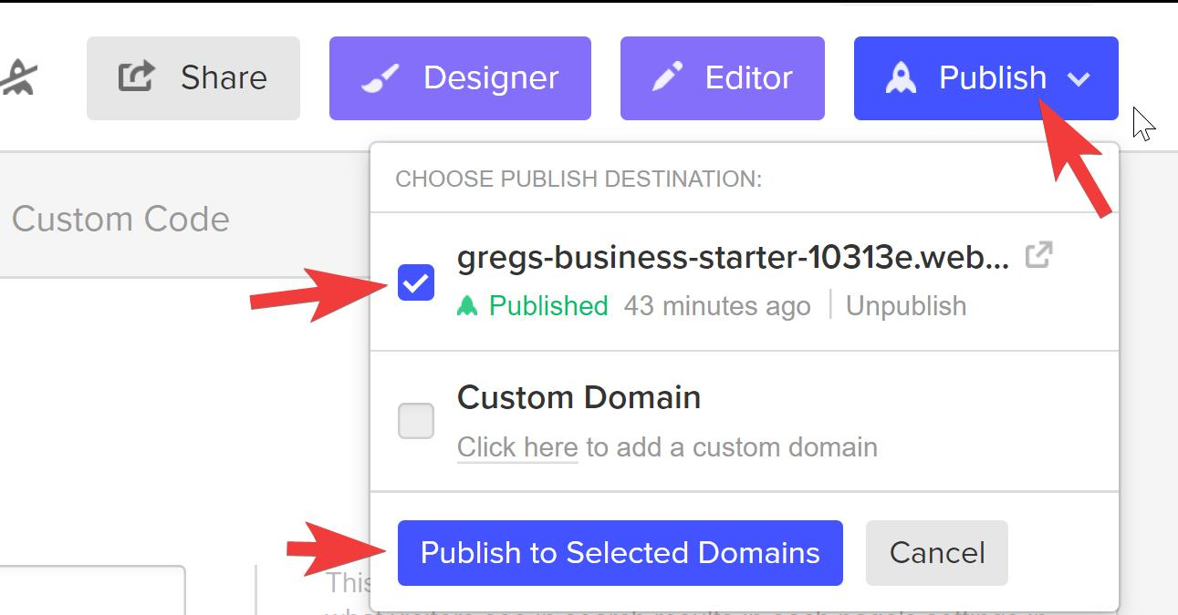 First click Publish, select your domain, then click Publish to Selected Domains